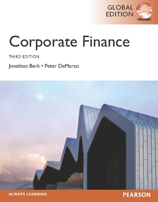 term paper on corporate finance