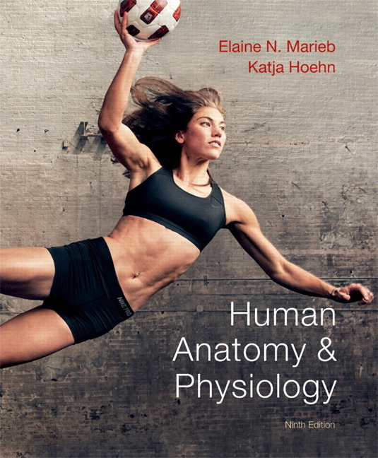 Elaine marieb practice test-chapter 18 - GerardHallman's blog