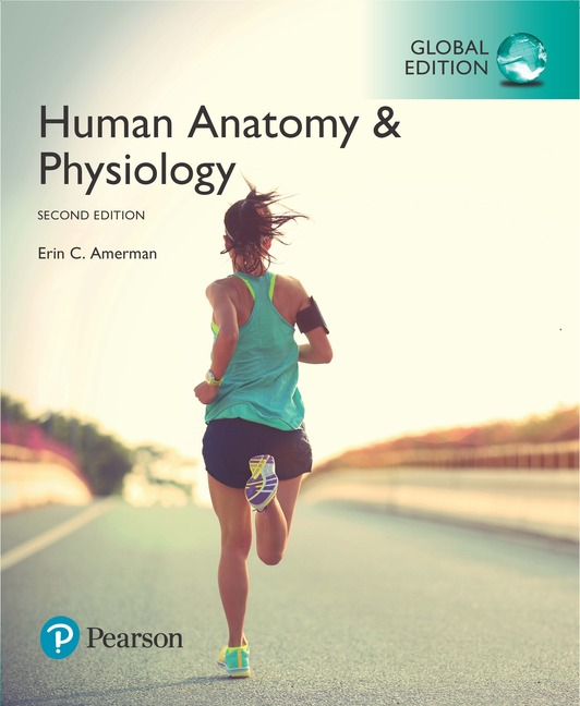Pearson Education - Human Anatomy & Physiology, Global Edition