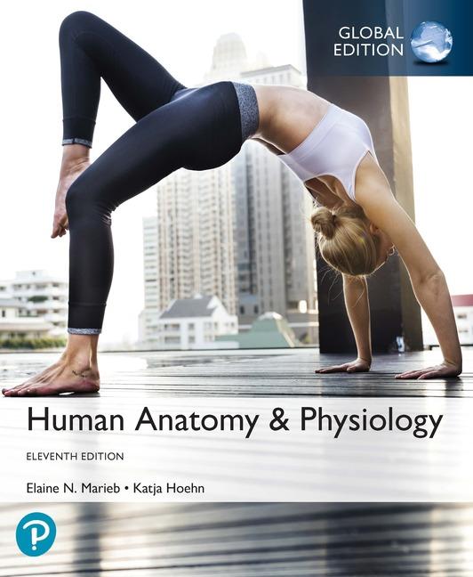 Pearson Education Human Anatomy Physiology Plus Pearson