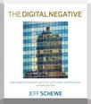 Digital Negative, The