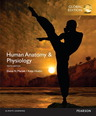 Human Anatomy & Physiology, OLP with eText, Global Edition
